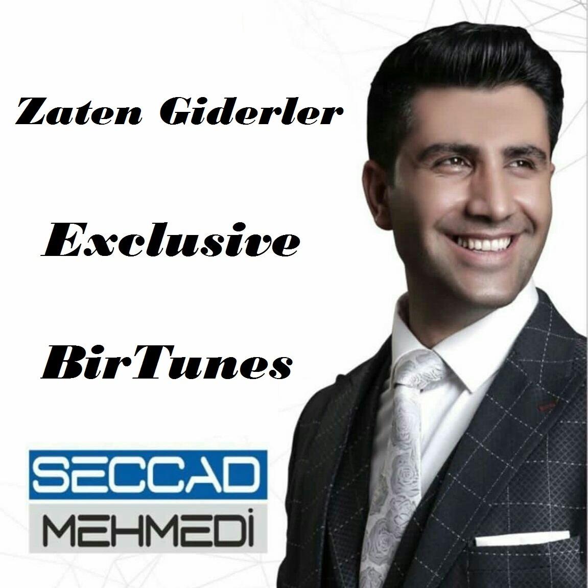 http://birtunes.ir/wp-content/uploads/2018/11/Seccad-Mehmedi-Gunel-Zaten-Giderler.jpeg